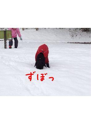 初雪遊び_e0244283_0232359.jpg