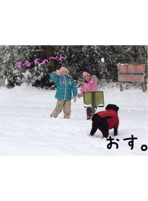 初雪遊び_e0244283_0232521.jpg