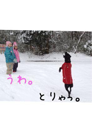 初雪遊び_e0244283_0232810.jpg