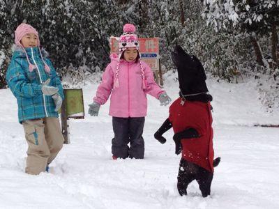 初雪遊び_e0244283_0233142.jpg