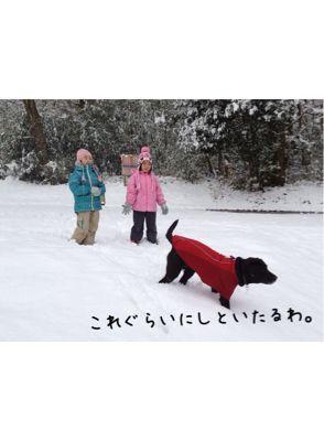 初雪遊び_e0244283_02334100.jpg