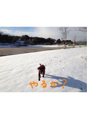 初雪遊び_e0244283_0233679.jpg