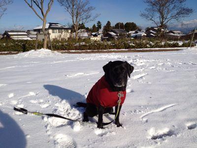 初雪遊び_e0244283_0262112.jpg