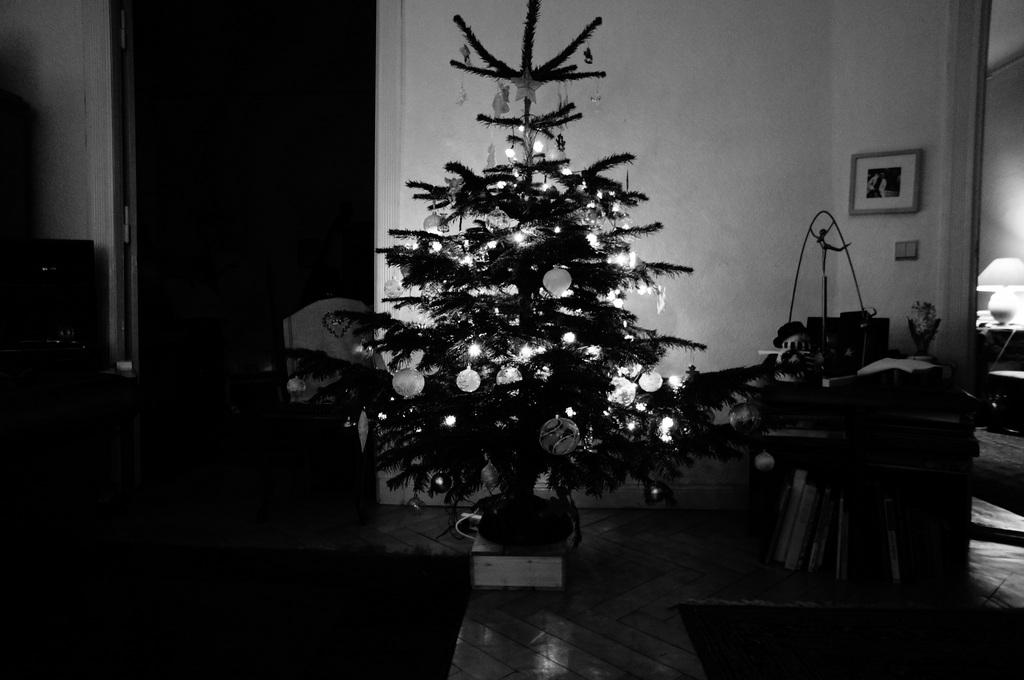 クリスマス晩餐Vol-2 Nex5n_c0180686_2027426.jpg