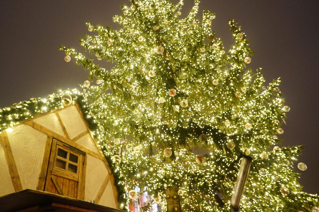 クリスマスが終わり年末ですね。_c0180686_21185545.jpg