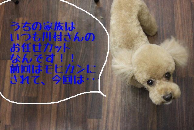 b0130018_12304736.jpg