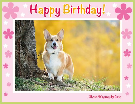 アンナちゃん、お誕生日おめでとう♪_d0102523_1293334.jpg