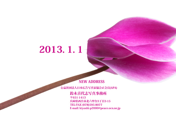 2013/01/01 年賀状特設展  2013_b0171364_13371983.jpg