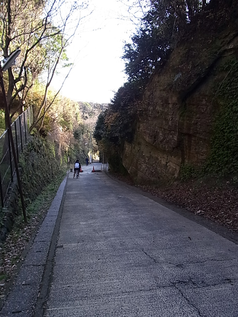 大晦日に鎌倉を散策_b0186200_1502536.jpg