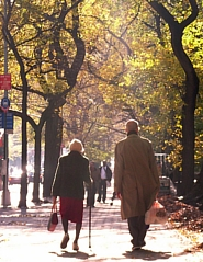 一年の計は元旦に・・・メルマガ「ニューヨークの遊び方」は如何でしょう?<2012バックナンバー全リスト>_b0007805_0501954.jpg