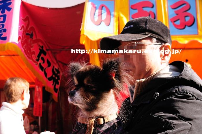 おせち料理と神社参詣_a0229217_11222759.jpg