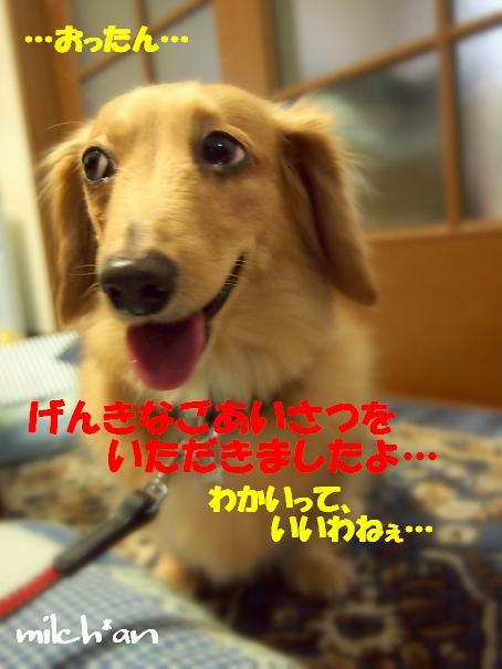 b0115642_2123596.jpg