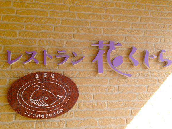 和歌山へGO!_e0292546_8494139.jpg
