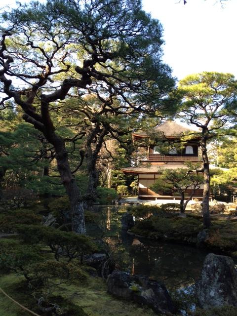 京都旅行の写真を掲載します_b0115553_1455523.jpg