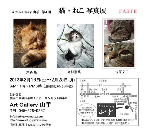 「第4回 猫・ねこ 写真展」のお知らせ Art Gallery 山手_f0117059_18502953.jpg