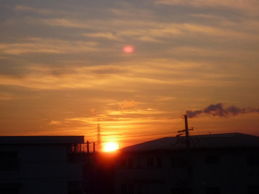2013年 迎春_c0086176_914129.jpg