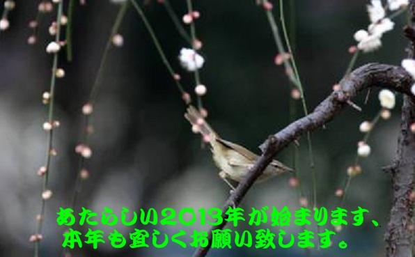 d0090001_14404682.jpg