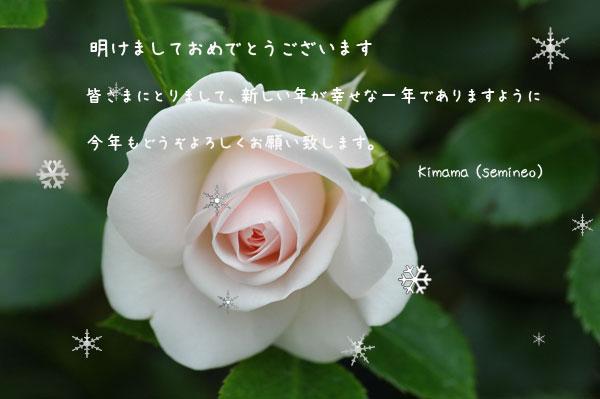 c0051105_23491188.jpg