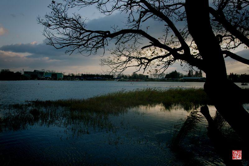 冬・琵琶湖の朝_a0157263_21481878.jpg