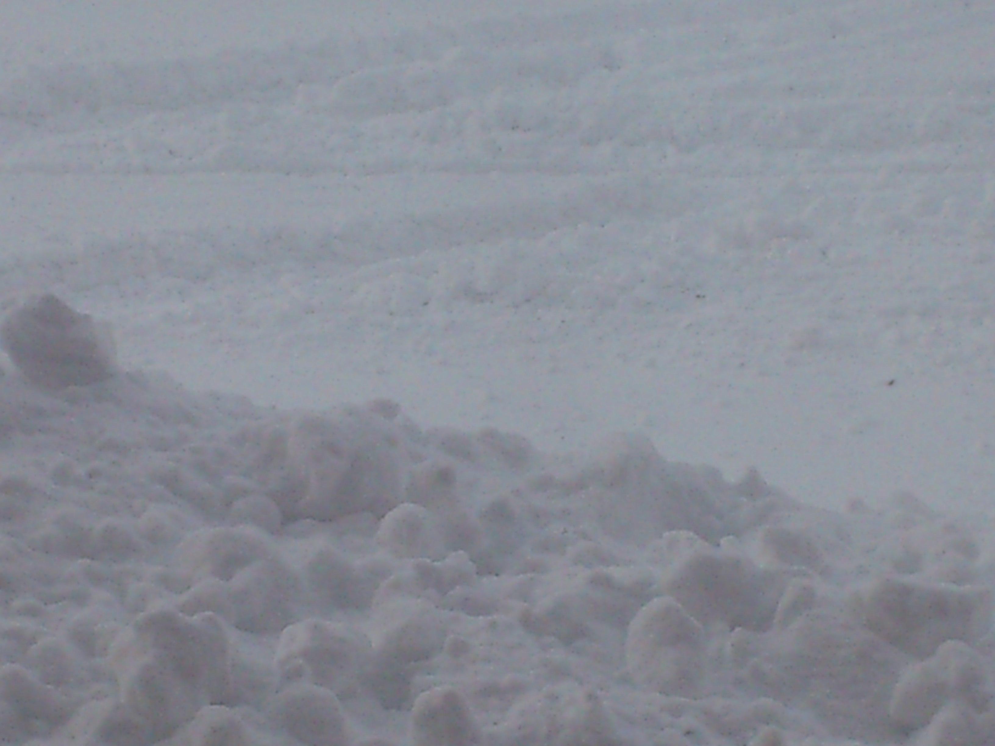 大雪の函館_b0106766_1011063.jpg