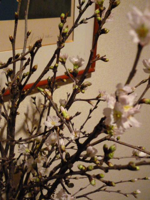 迎春・・・・今年も又、素敵な「ご縁」が_b0210699_23471760.jpg