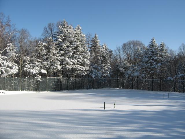 雪が降りましたネ!_f0146620_17102487.jpg