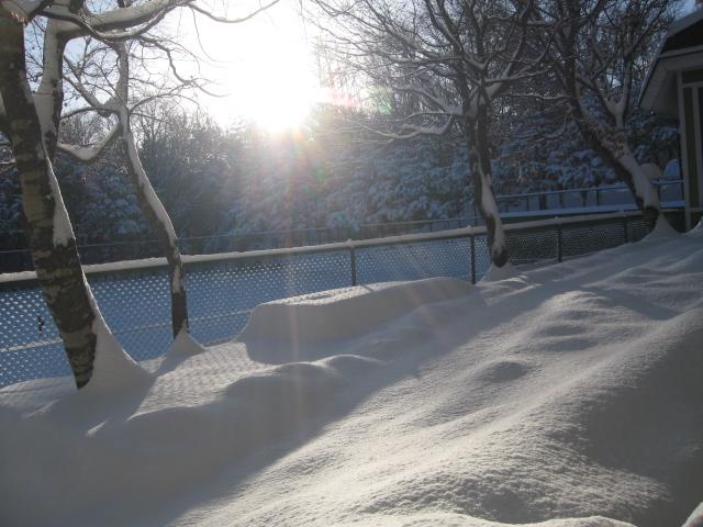 雪が降りましたネ!_f0146620_1773384.jpg