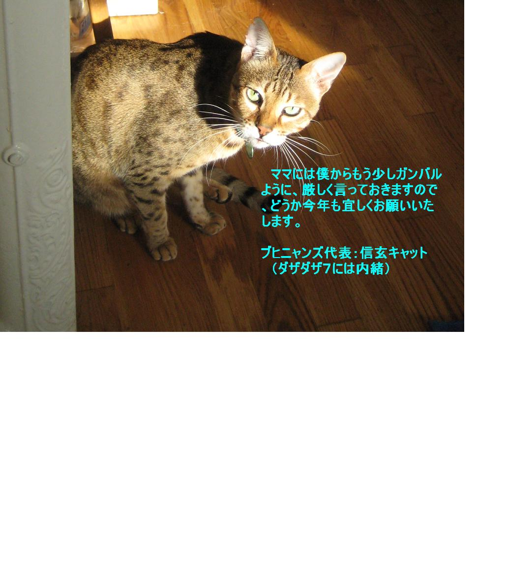 c0132537_721939.jpg