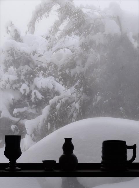 雪のシルエット_a0233551_1240198.jpg