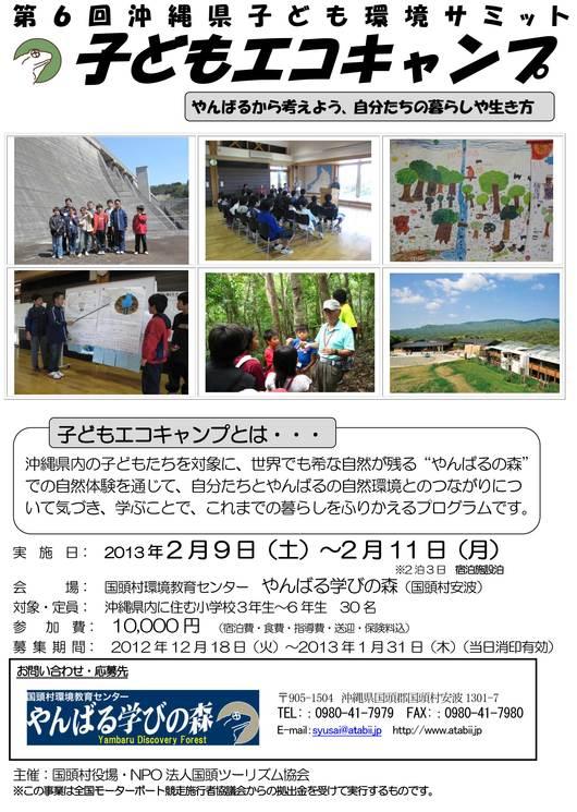 第6回沖縄県子ども環境サミット募集中_f0121321_14261645.jpg