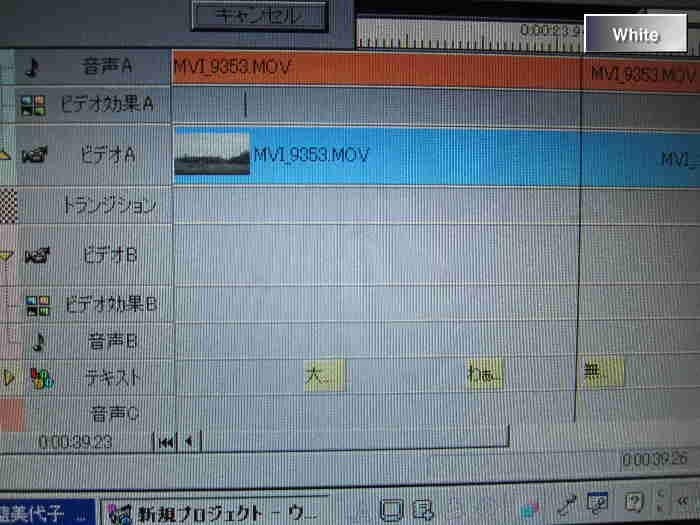 c0227134_5283239.jpg