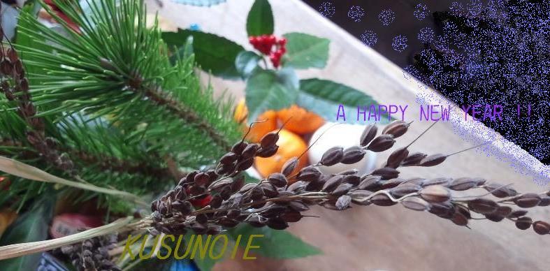 謹賀新年_f0174866_12351269.jpg