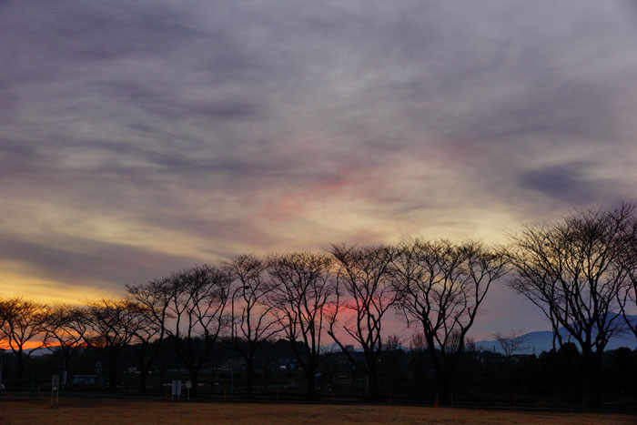 小寒 翌の夕_e0077521_20505787.jpg