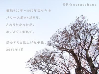c0092152_0324945.jpg