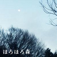 b0222060_114614.jpg