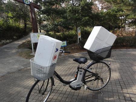 うみべの森一人作業始め  by  (TATE-misaki)_c0108460_15484274.jpg