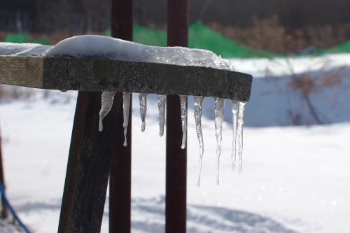 冬の畑_c0110869_21221253.jpg