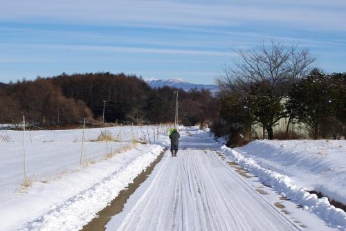 冬の畑_c0110869_21223283.jpg