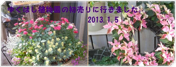 b0096584_21574777.jpg