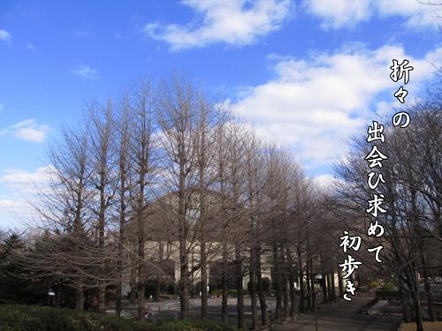 f0137096_22452436.jpg