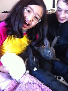 ウサギとユキちゃん_f0106597_16225020.jpg