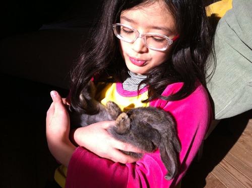 ウサギとユキちゃん_f0106597_16275734.jpg