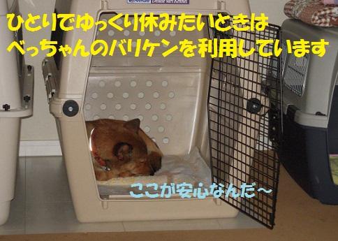 f0121712_7201394.jpg