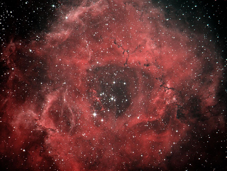 バラ星雲2013_c0061727_13134295.jpg