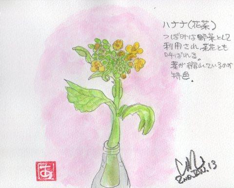 七草_e0232277_10305632.jpg