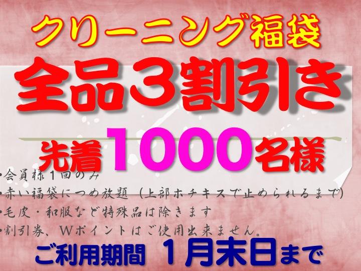 今週のお花&セール情報_a0200423_2041118.jpg