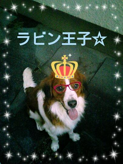 王子様と王女様_b0239048_19425011.jpg
