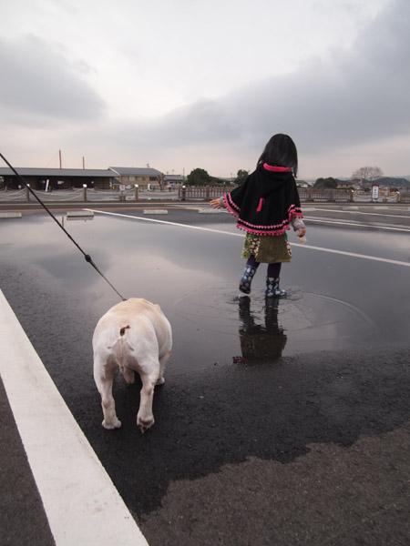 大顔連総裁のボスが奈良へ!!_a0118270_17581833.jpg