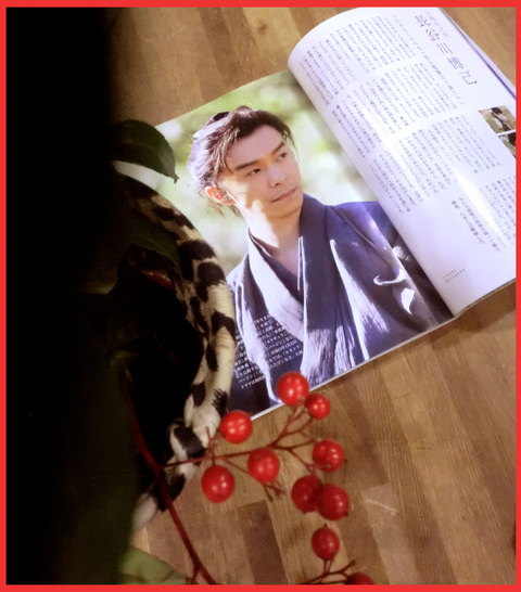 とうとうはじまりました。NHK大河ドラマ「八重の桜」。_e0236072_23503740.jpg