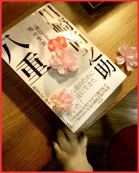 とうとうはじまりました。NHK大河ドラマ「八重の桜」。_e0236072_23512522.jpg